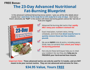 the fat burning kitchen bonus