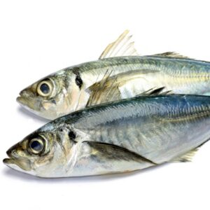 fresh-fish