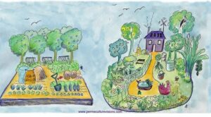permaculture-and-agriculture
